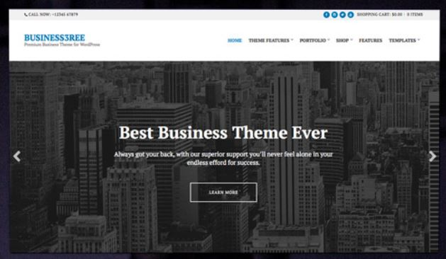 CSS Igniter Business3ree WordPress Theme 1
