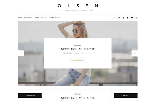 CSS Igniter Olsen WordPress Theme 1