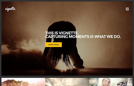 CSS Igniter Vignette WordPress Theme