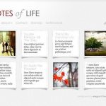 Elegant Themes DailyNotes WordPress Theme