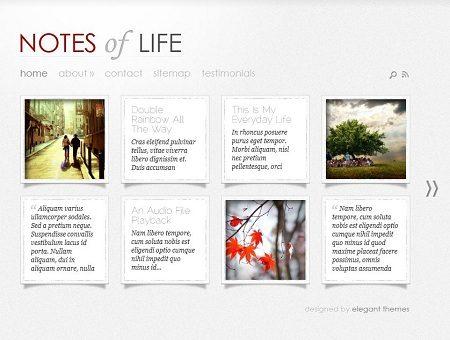 Elegant Themes DailyNotes WordPress Theme