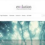 Elegant Themes Evolution WordPress Theme