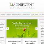 Elegant Themes Magnificient WordPress Theme