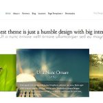 Elegant Themes Modest WordPress Theme 1