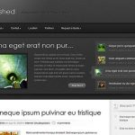 Elegant Themes Polished WordPress Theme