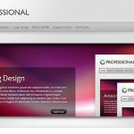 Elegant Themes TheProfessional WordPress Theme 1
