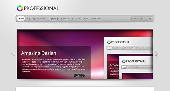 Elegant Themes TheProfessional WordPress Theme