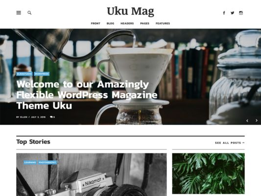 Elmastudio Uku WordPress Theme