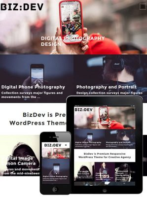 Dessign BizDev Responsive WordPress Theme