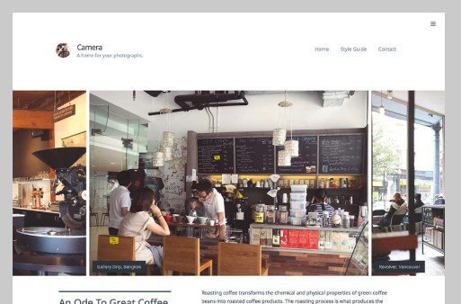 Array Themes Camera WordPress Theme 1