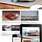dessign display responsive wordpress theme
