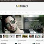 elegant themes aggregate wordpress theme
