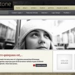 elegant themes coldstone wordpress theme