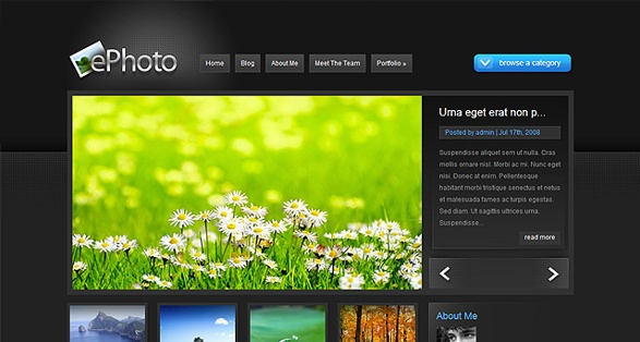 elegant themes ephoto wordpress theme
