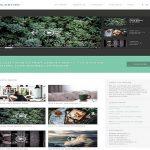 ThemeIsle The Motion WordPress Theme