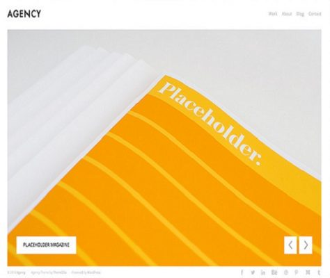 ThemeZilla Agency WordPress Theme