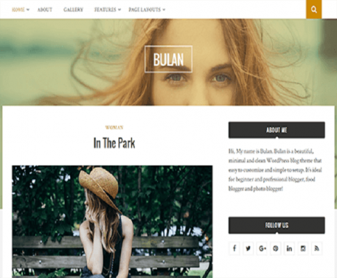 bulan wordpress theme