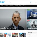 Magnow WordPress Theme 1