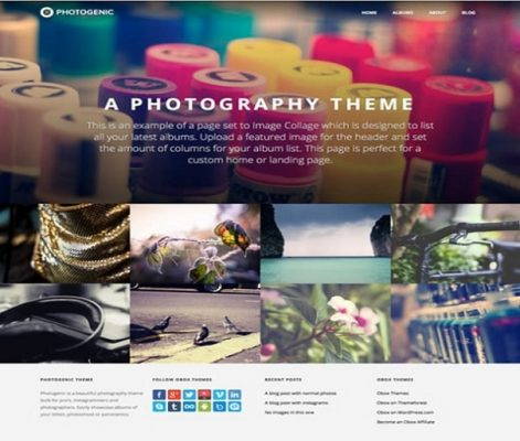 obox themes photogenic wordpress theme