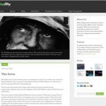 obox themes tinyblog wordpress theme