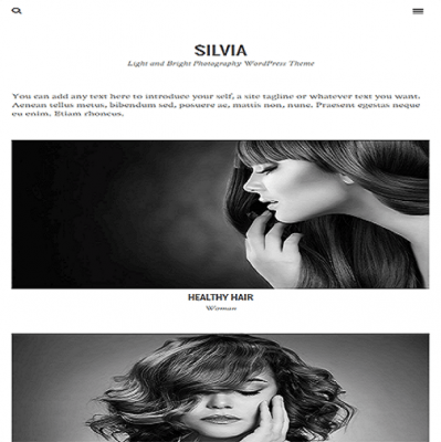 silvia wordpress theme