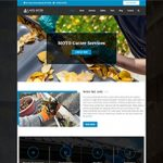 Premium Moto Theme Gutter Services