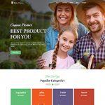 Premium Moto Theme Organic Food Store