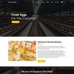Premium Moto Theme Poultry Farm