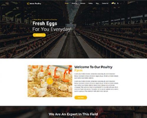 Premium Moto Theme Poultry Farm 1
